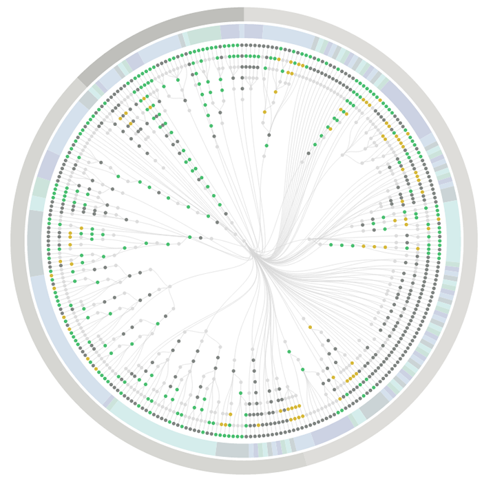 PhantomFlow Report: Test suite overview with radial Dendrogram and pie visualisation
